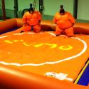 Base de jeux + sumo